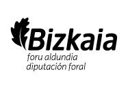Bizkaia foru aldundia